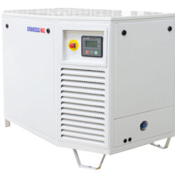 Endress ESE 808 GF 60 Hz 1~ LPG Generator