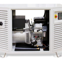 Endress ESE 808 GF LPG Generator | Natural Gas Generator