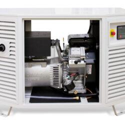 Endress ESE 808 GF LPG Generator | Natural Gas Generator
