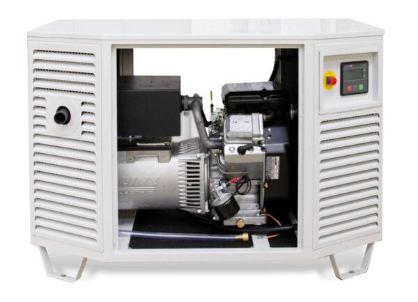 Endress ESE 808 GF LPG Generator   Natural Gas Generator