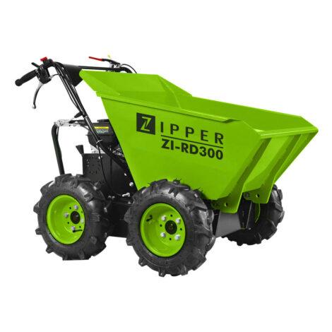 ZI-RD300